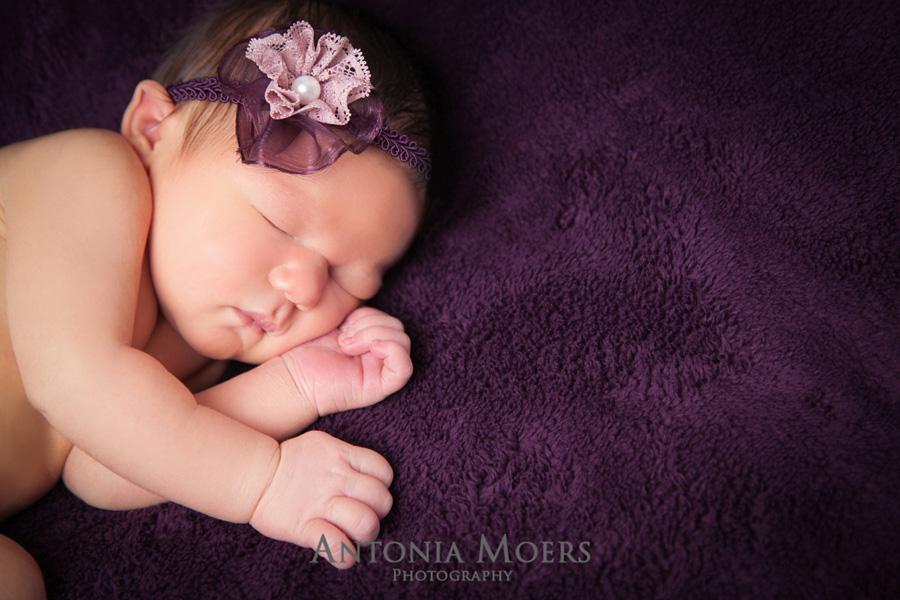 Newbornfotografie © Antonia Moers
